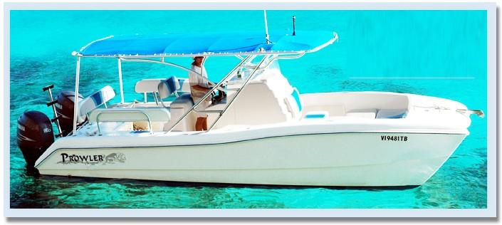 St Thomas Vacation Rentals, USVI, St Thomas Vacation Rental, vrbo, airbnb, homeaway, trip advisor, flipkey, vacationrentals, elysian beach resort, cowpet bay, red hook, redhook, east end, east end eden, virgin islands, power boats